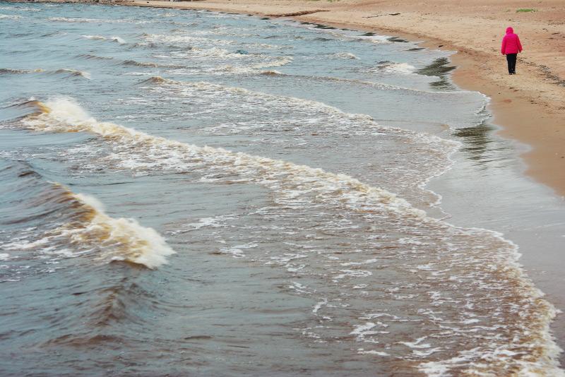 Финский залив, пляж