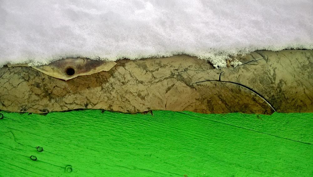 Фактура дерева, камня линолеума, снега