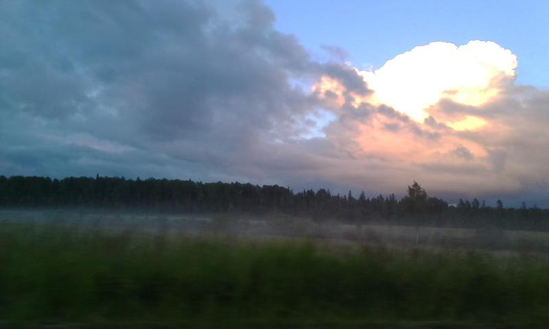 Туман вдоль шоссе