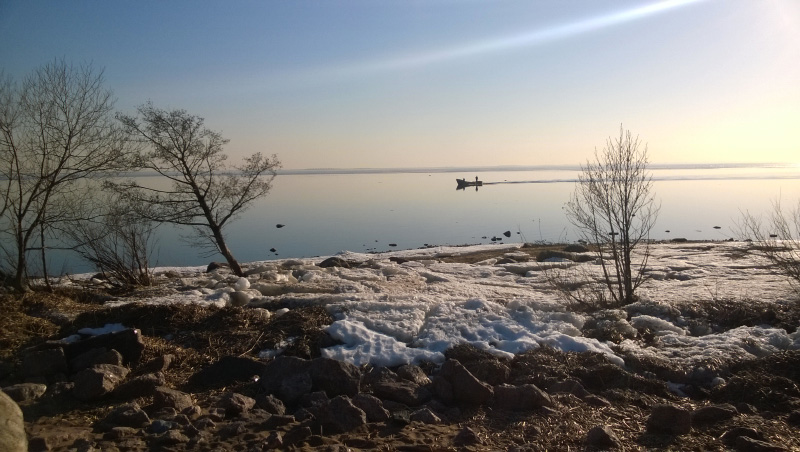 Финский залив в парке Дубки