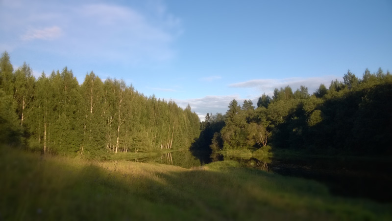 Развилка реки